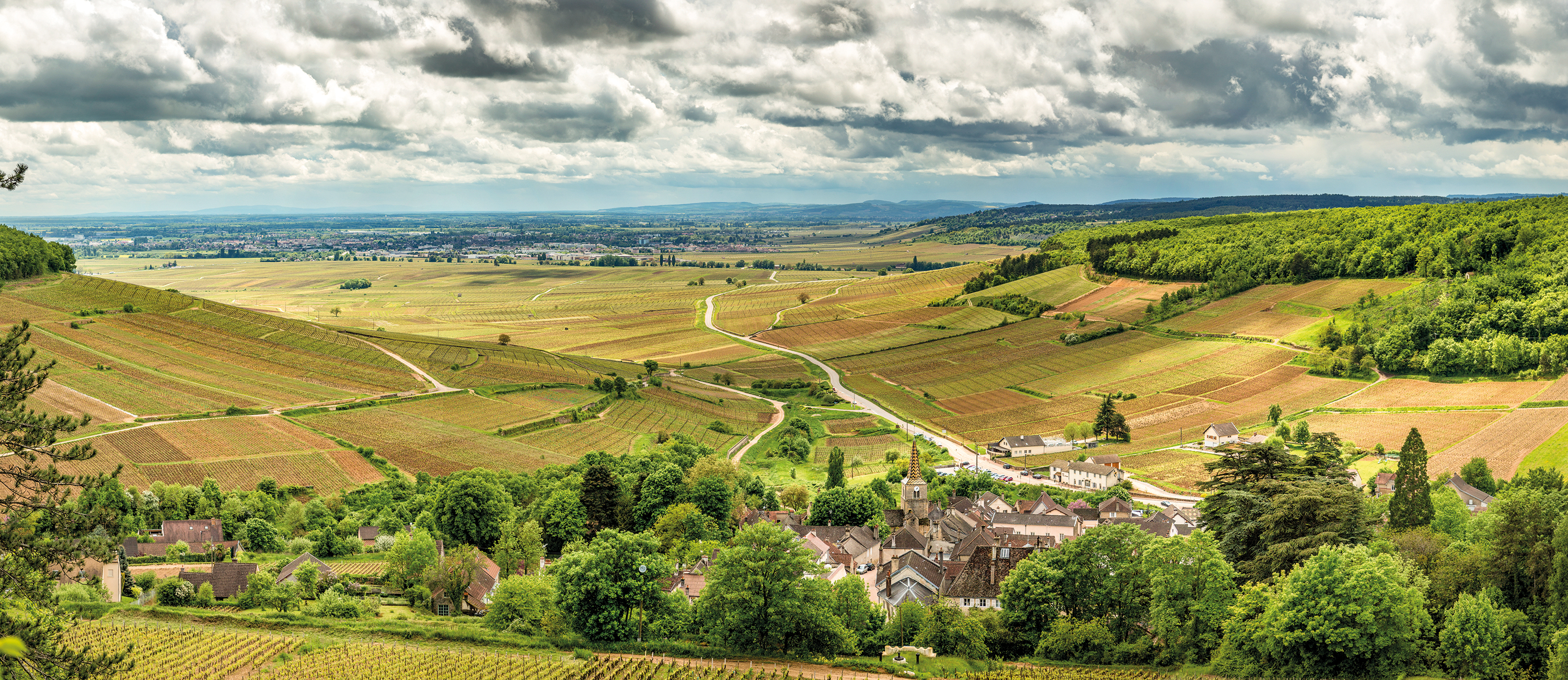 Burgundy village surrounded by vineyards
